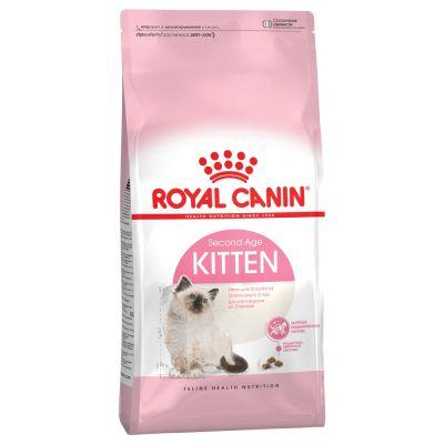 royal canin kitten trockenfutter