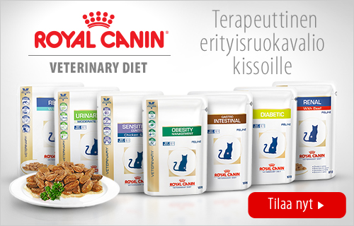 royal canin vet cat