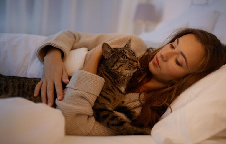 kissa maukuu öisin