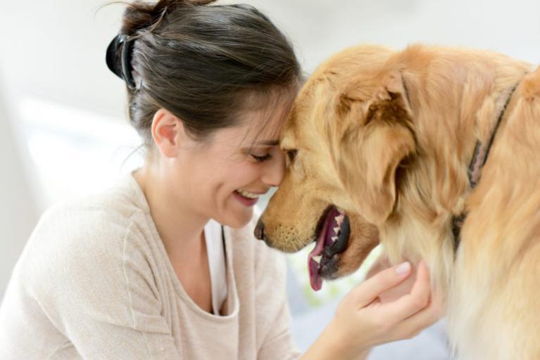 koiran adoptio