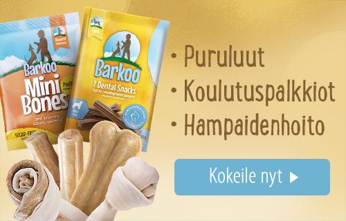 Barkoo_1