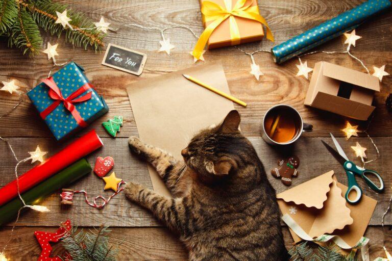 Kissan joulukalenteri