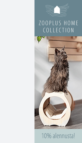 Home_Collection_Sale_Left